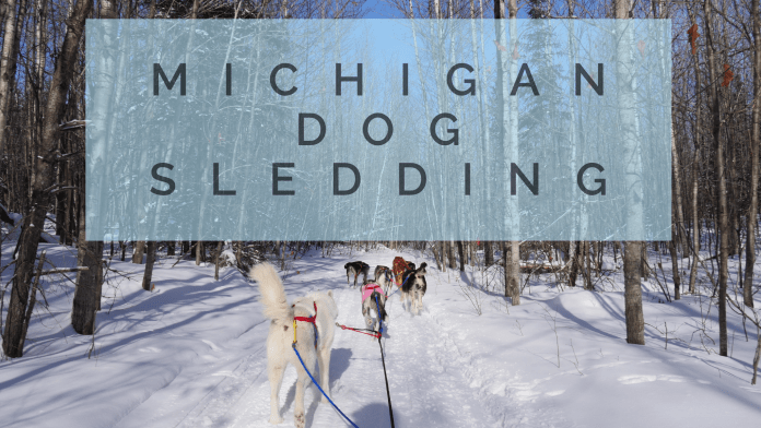 Michigan Dog Sledding